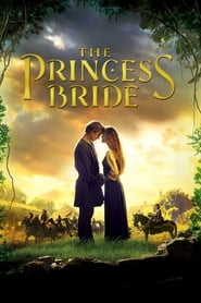 The Princess Bride at The World Drive-In Movie Poster